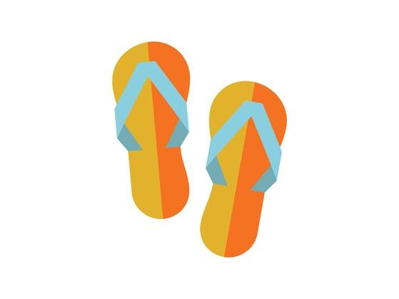 Flip_Flops.png